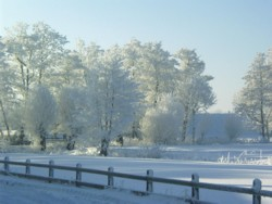 Winter in der Marsch